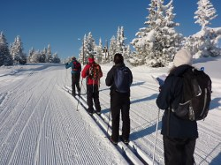 Cross-country skiing in Norway