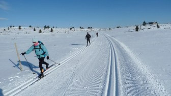 Clients on a cross country ski skills course