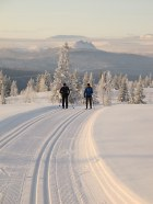 Clients cross-country skiing in Norway