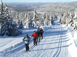 A group of clients on a cross-country skiing holiday in Norway